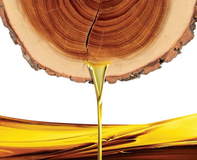 sandalwoods science Сандаловое масло: свойства и применение в косметологии