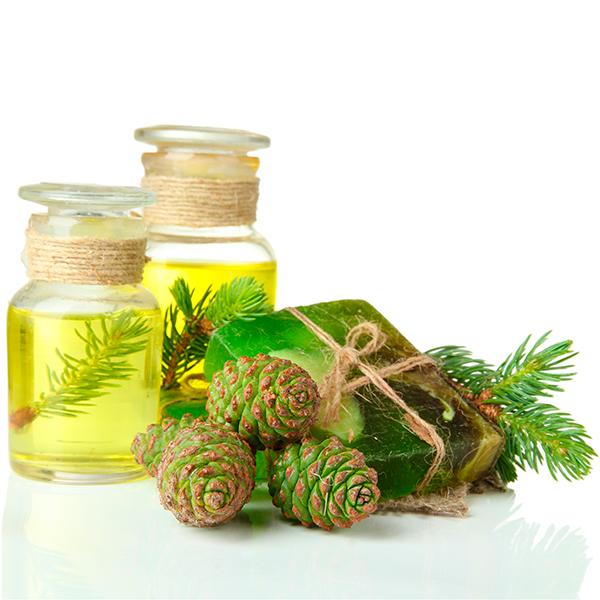 Эфирное масло пихты: применение и полезные свойства