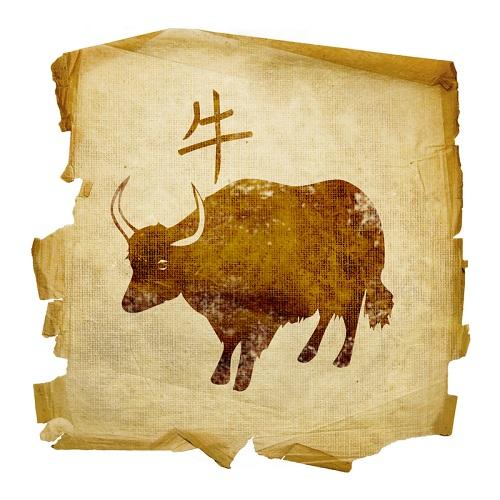 Бык Восточный гороскоп на 2015 год: предсказания от профессионального астролога