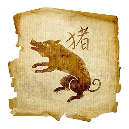 Кабан Восточный гороскоп на 2015 год: предсказания от профессионального астролога