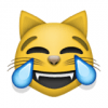 81 cat face with tears of joy 100x100 Ничего себе! Кошке исполняется 30 лет