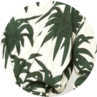 Пальмы Самые модные принты наступающей весны