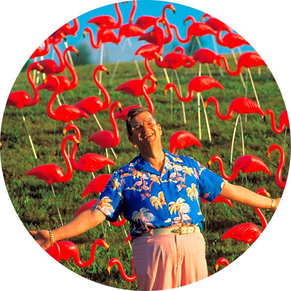 Flamingo1 Розовые фламинго, или Как создаются бытовые произведения искусства