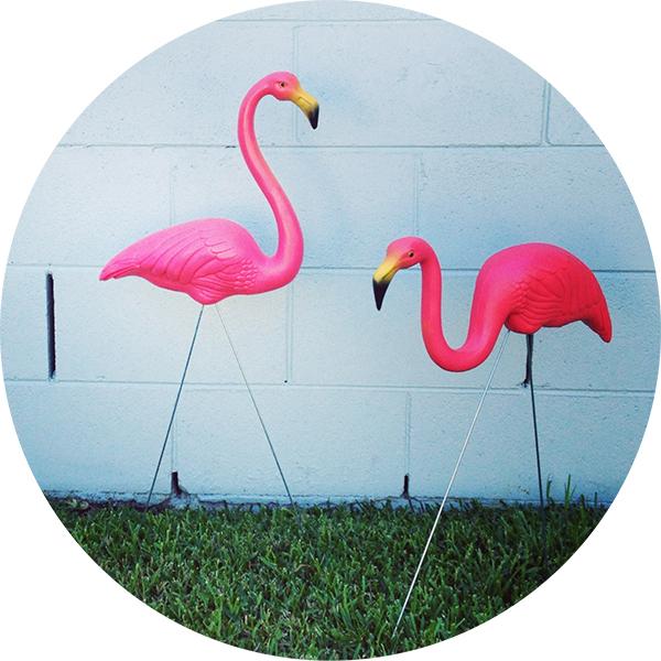 Flamingo3 Розовые фламинго, или Как создаются бытовые произведения искусства