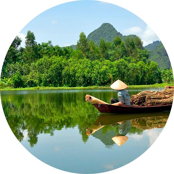 vietnam Куда лететь на «зимовку» в кризис?