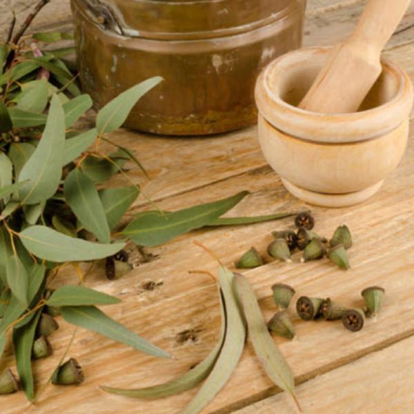 Eucalyptus oil 600x600 2 Эфирное масло эвкалипта: полезные свойства и применение в косметологии
