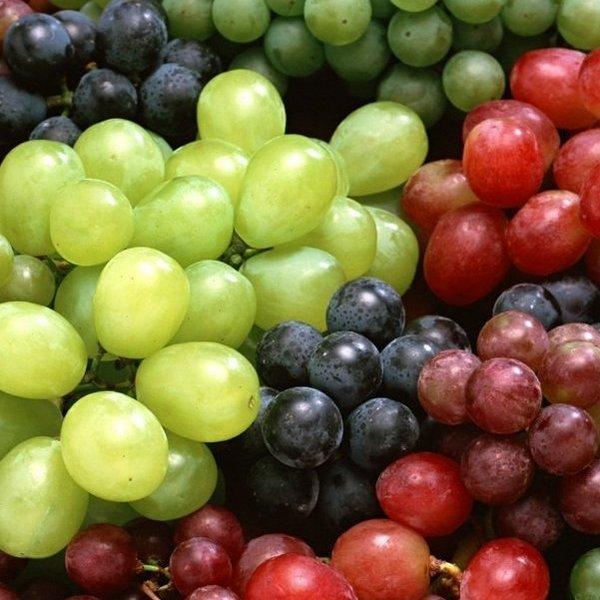 grapes 051 Виноградное масло: полезные свойства, применение, противопоказания