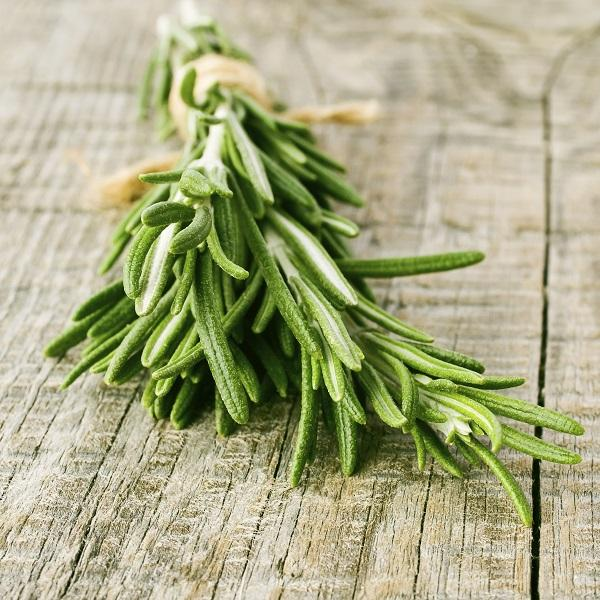 img the health benefits of rosemary 2527 orig Масло розмарина для волос