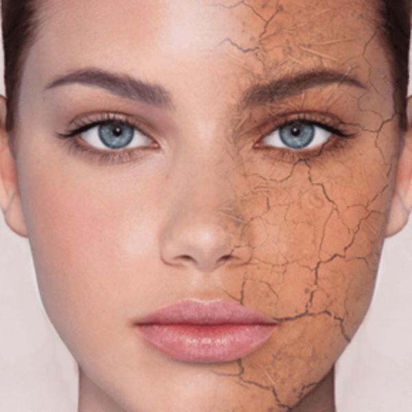 43815 normal Пальмовое масло в косметологии: польза и применение