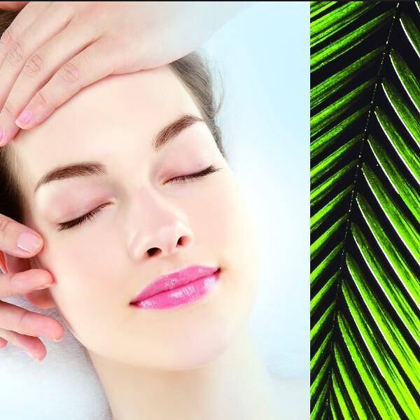 Australian private label blue cypress essential oils Эфирное масло кипариса: полезные свойства и применение в косметологии
