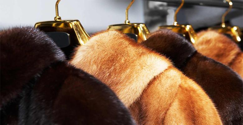 Как почистить кроличью шубу в домашних условиях эффективные способы
