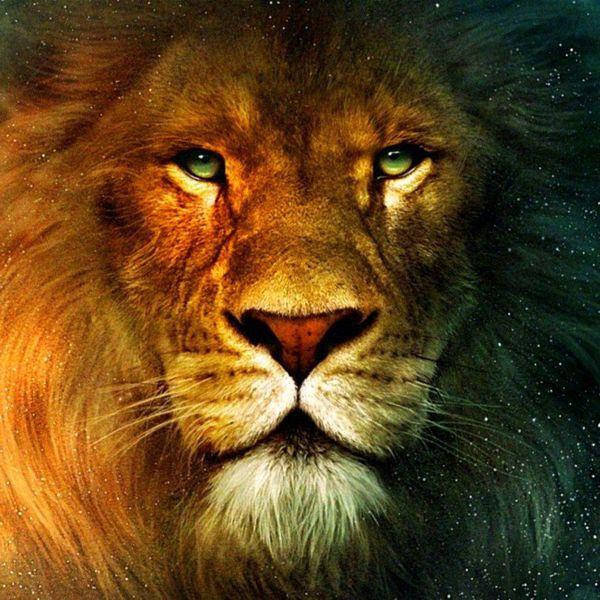 какие Львы в любви с Тельцами