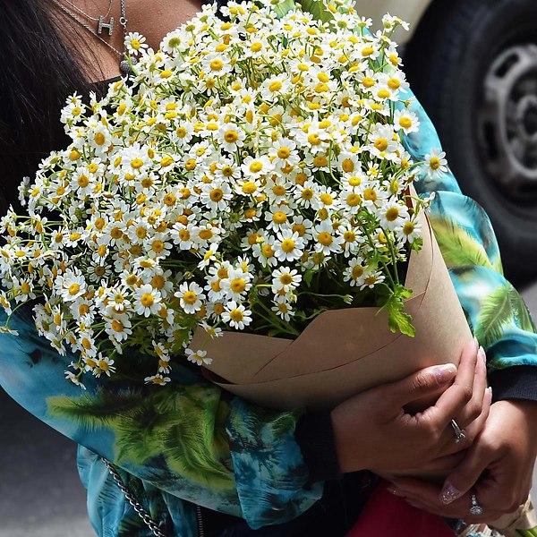 какой цветок соответствует Тельцу