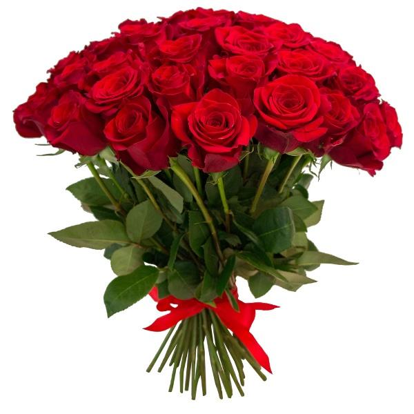 красные розы для девушки